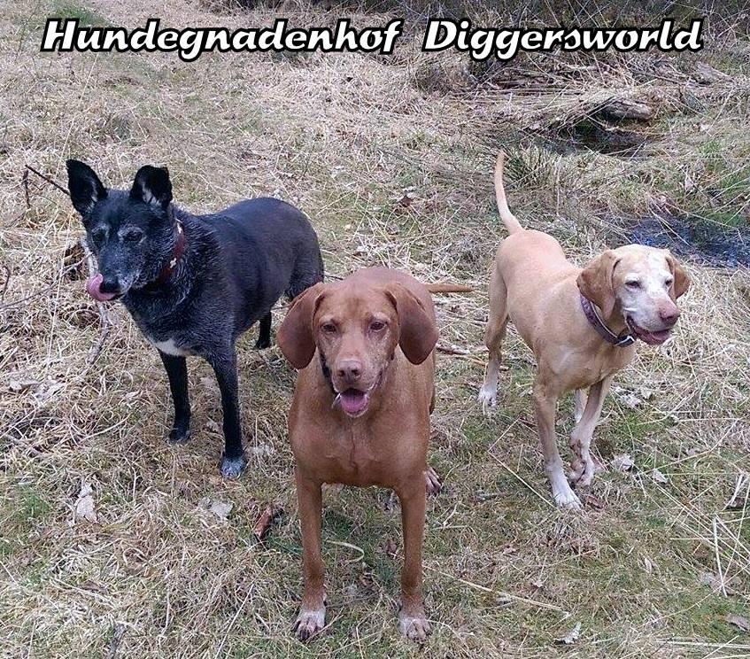 ELLA, LENNIE und LEXIE