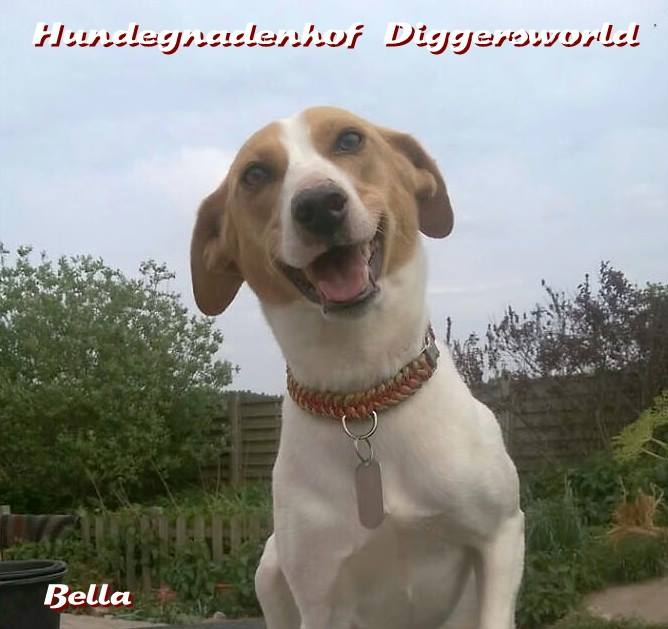 Das hübscheste Lächeln von Bella