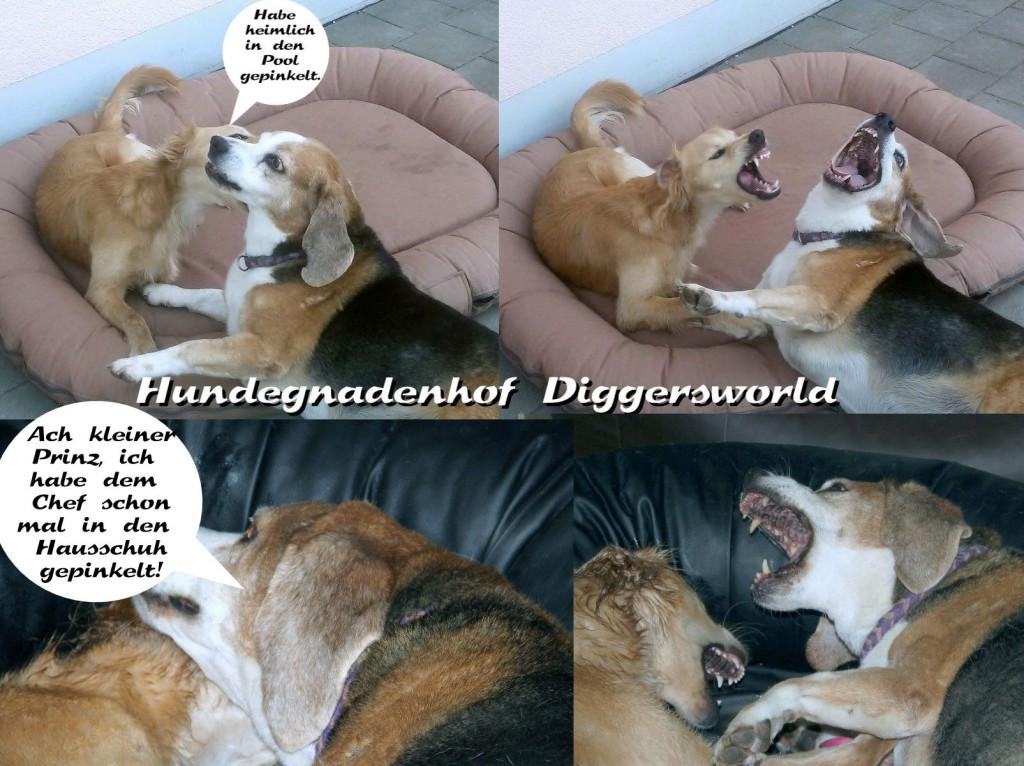Comic mit Chippi und Theo (Ich hab dem Chef schon mal in den Schuh gepinkelt *hihi*)