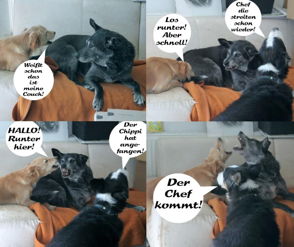 Das Couch-Problem. Chippi denkt, die gehört ihm, aber Ella ist da anderer Meinung