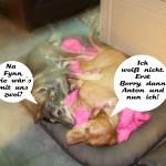 Minka flirtet mit Fynn