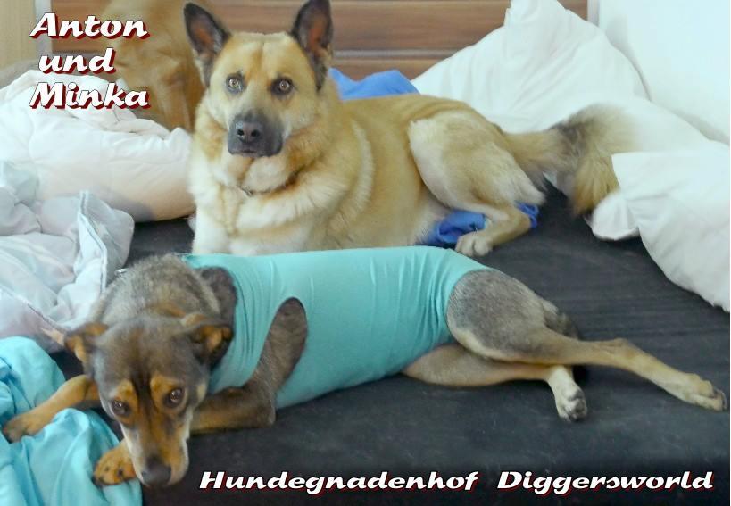 Anton und Minka in ihrem Body